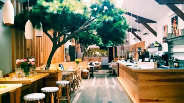 restaurant japonais yvrac
