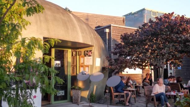 Restaurant le caillou du jardin botanique bordeaux for Restaurant le jardin du cap